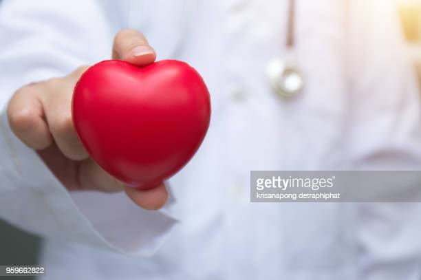 Doctor holding red heart with stethoscope on white background.
