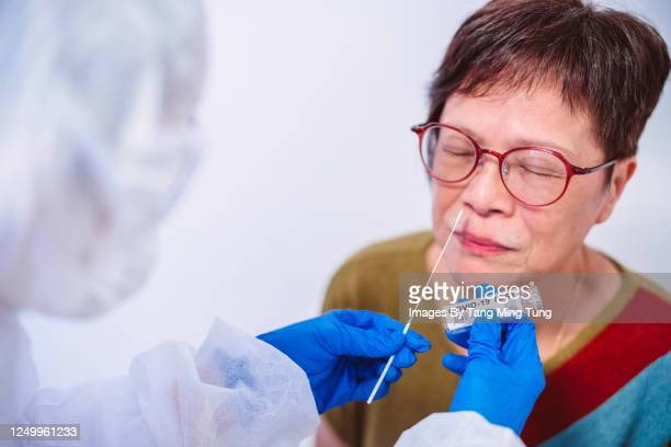 doctor in protective gloves & workwear holding testing kit for the coronavirus test - scientific experiment stock pictures, royalty-free photos & images