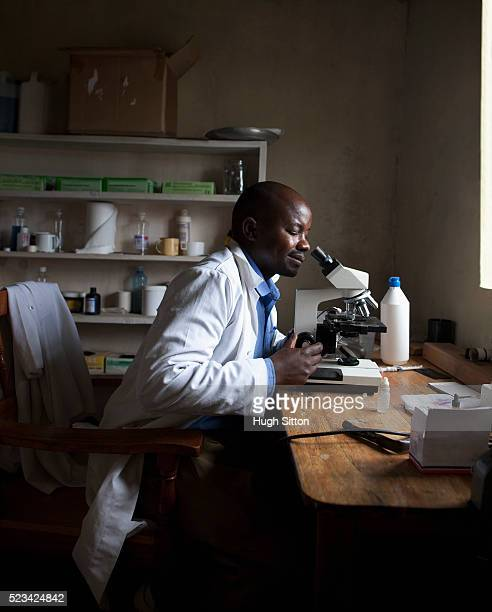 doctor looking in microscope - hugh sitton stock pictures, royalty-free photos & images