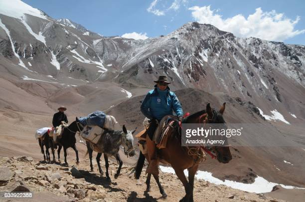 Doctor of the expedition Matías Espejo arrives at the top of Espinacito with the mule ambulance in the framework of the bicentenary of Cruce de los...