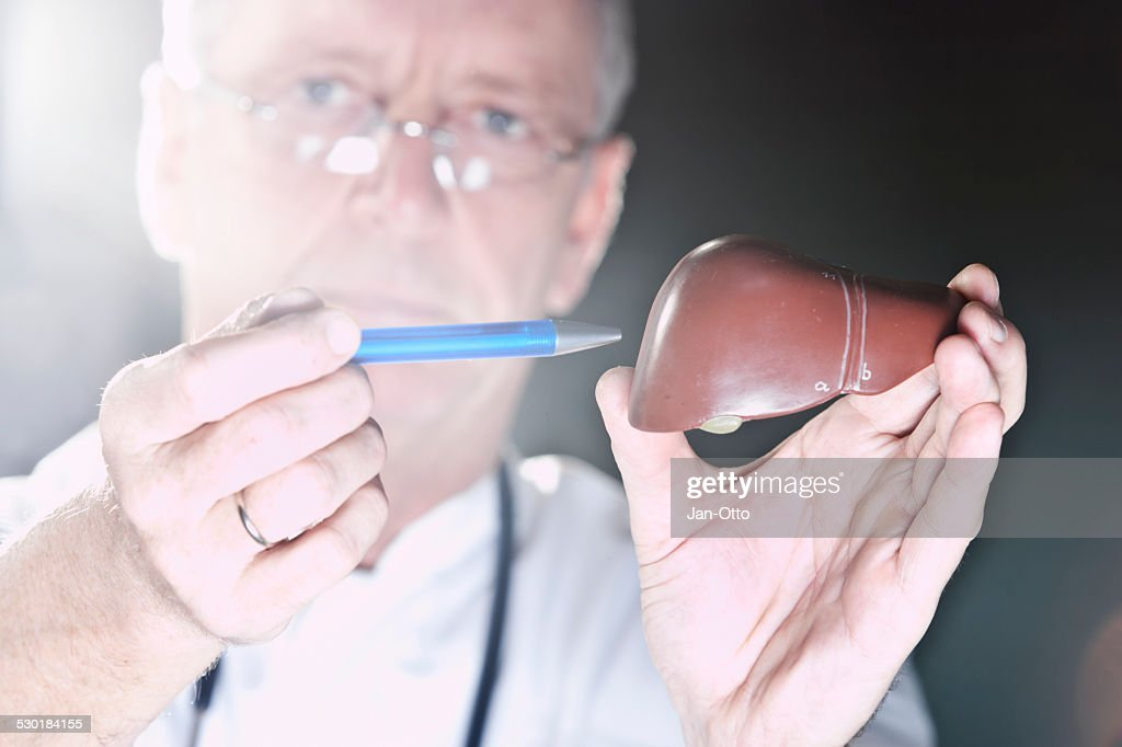 Doctor pointing at liver : Stock Photo