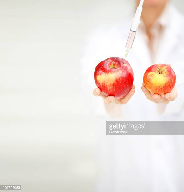 doctor showing the difference in two apples after experiment - mid section stock photos and pictures