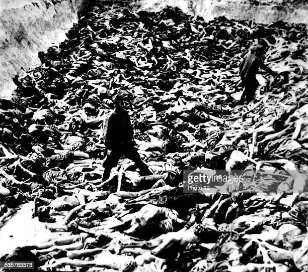 Doctor SS Klein with his victims in BergenBelsen 20th World War II Jewish Documentation Center