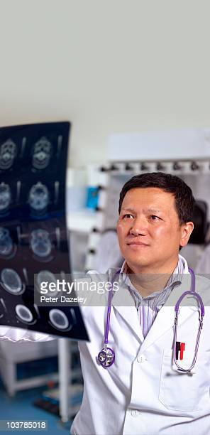 doctor studying cat scan - newhealth stock pictures, royalty-free photos & images