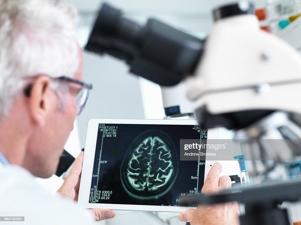 Doctor viewing a MRI brain scan on digital tablet in a laboratory : Stock Photo