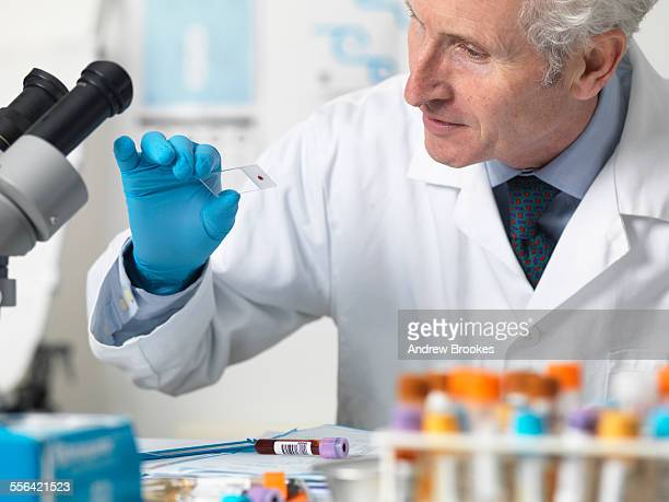 Doctor viewing patients blood slide and other samples under microscope for testing