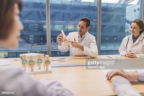 Doctors viewing anatomical model in meeting room