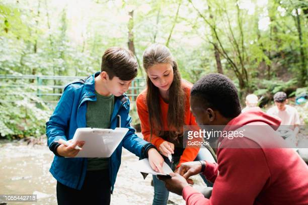 documenting their findings - field trip stock pictures, royalty-free photos & images