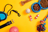 Dog accessories on yellow background. Top view. Pets and animals concept