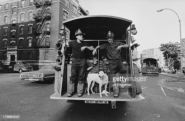 A dog accompanies two fireman on a firetruck South Bronx New York circa 1976