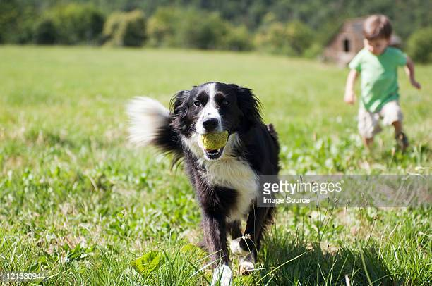 Dog and boy running in field