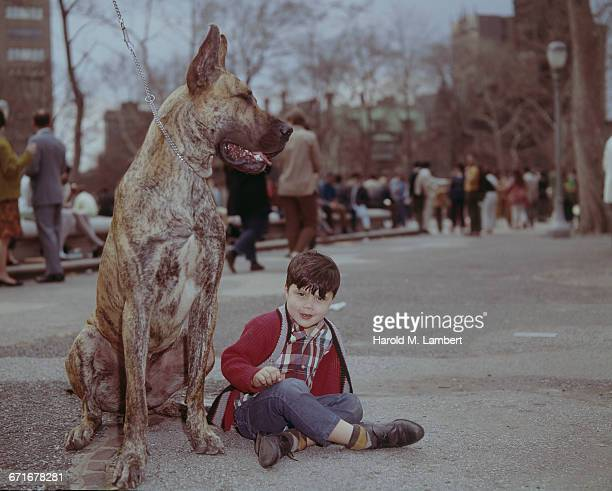 dog and boy sitting on road  - {{relatedsearchurl(carousel.phrase)}} stock pictures, royalty-free photos & images