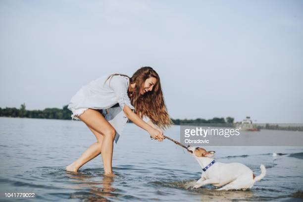 hund und mädchen spielen am ufer sagte. der hund zieht stick - fotostock stock-fotos und bilder