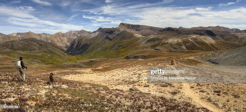Dog and Hiker by Continental Divide Trail Mountain Panorama : Stock Photo