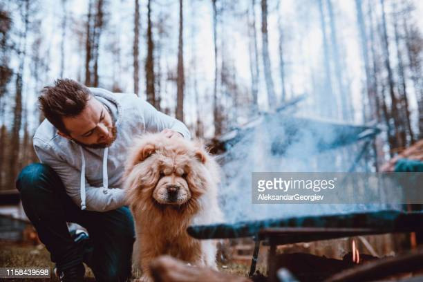 dog and his master making barbecue - chow dog stock pictures, royalty-free photos & images