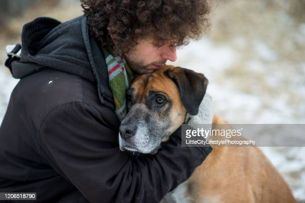 dog and his owner - emotional support stock pictures, royalty-free photos & images