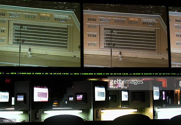 Dog and horse track racing monitors show events to gamble on in the Mohegan Sun casino November 20 2002 in Uncasville Connecticut The casino is owned...