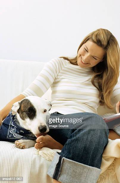 dog and lady owner on sofa - feet lick stock pictures, royalty-free photos & images