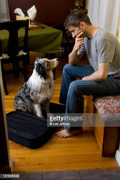 Dog and man looking at each other