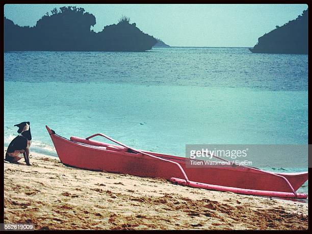 Dog And Outrigger Boat On Beach