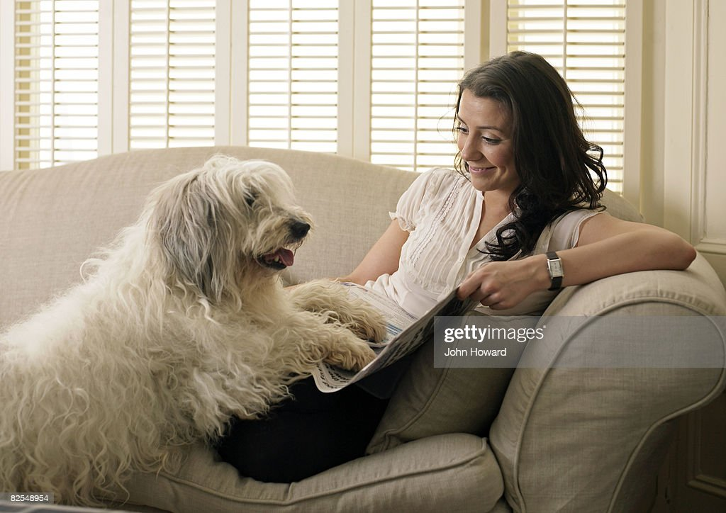 Dog and owner lying on sofa : Stock Photo