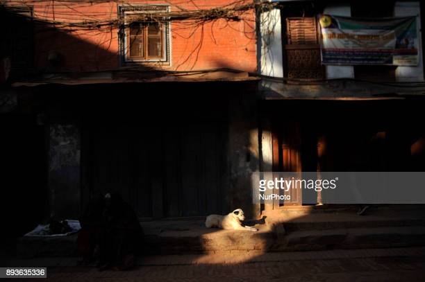 A dog basking in the sun at Bhaktapur Nepal on Friday December 15 2017