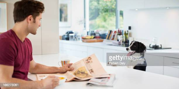 Perro mendicidad en mesa de cocina