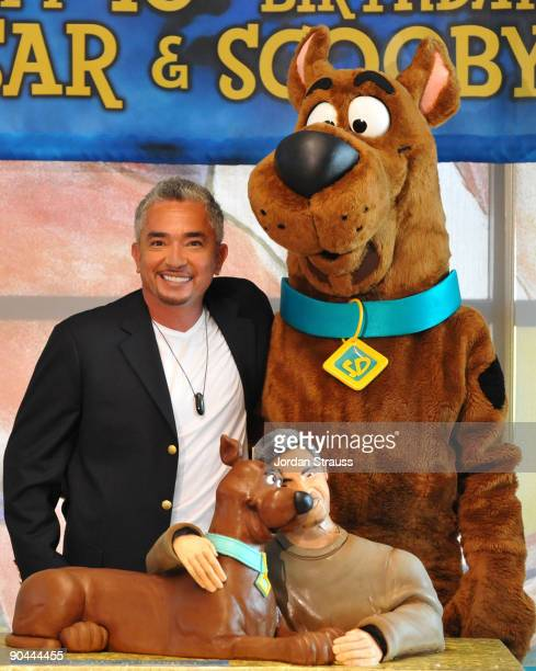 Dog behaviorist Cesar Millan and ScoobyDoo celebrate their 40th birthdays at the East Valley Shelter on September 8 2009 in Van Nuys California...