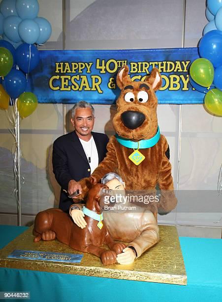 Dog behaviorist Cesar Millan attends ScoobyDoo and Cesar Milan birthday celebration at East Valley Shelter on September 8 2009 in Van Nuys California