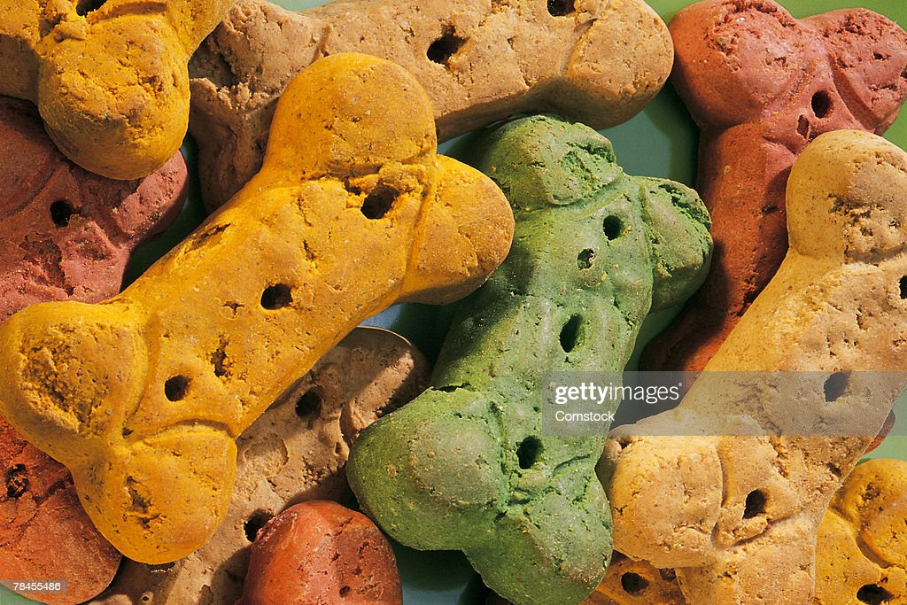 Dog biscuits : Stock Photo