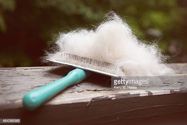Dog Brush with Fluffy White Fur
