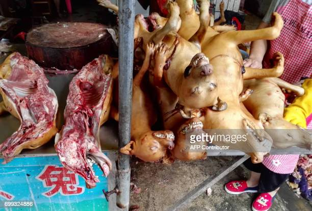 Dog carcasses are displayed at a dog meat market in Yulin in China's southern Guangxi region on June 21 2017 China's most notorious dog meat festival...