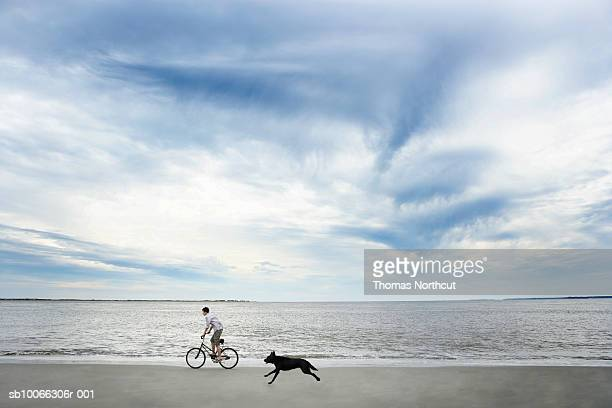 Dog chasing after boy (14-15) riding bike along beach, side view