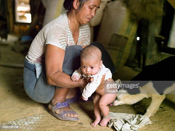 A dog cleans a baby as a grandmother looks after a 6 week old baby whilst his mother works in the fields Ban Watai Phongsaly province Lao PDR Ban...
