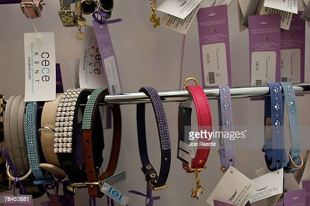Dog collars are on sale at the Chateau Poochie the luxury hotel for dogs and cats December 13 2007 in Pompano Beach Florida Amenities at the hotel...