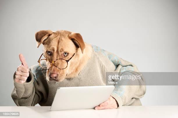 Perro Esto es bueno, con una tableta digital