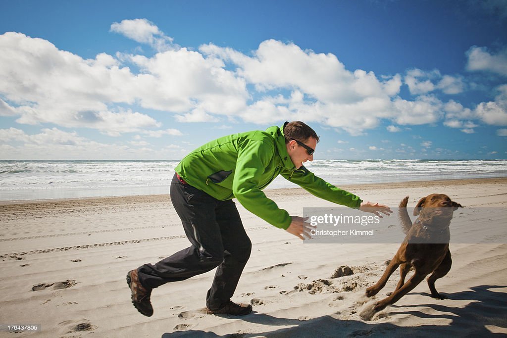 Dog evades owner : Stock Photo