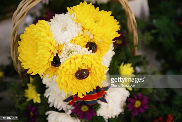 A dog flower display is seen at a department store on December 29 2005 in Seoul South Korea The year of 2006 is the year of the dog according to the...
