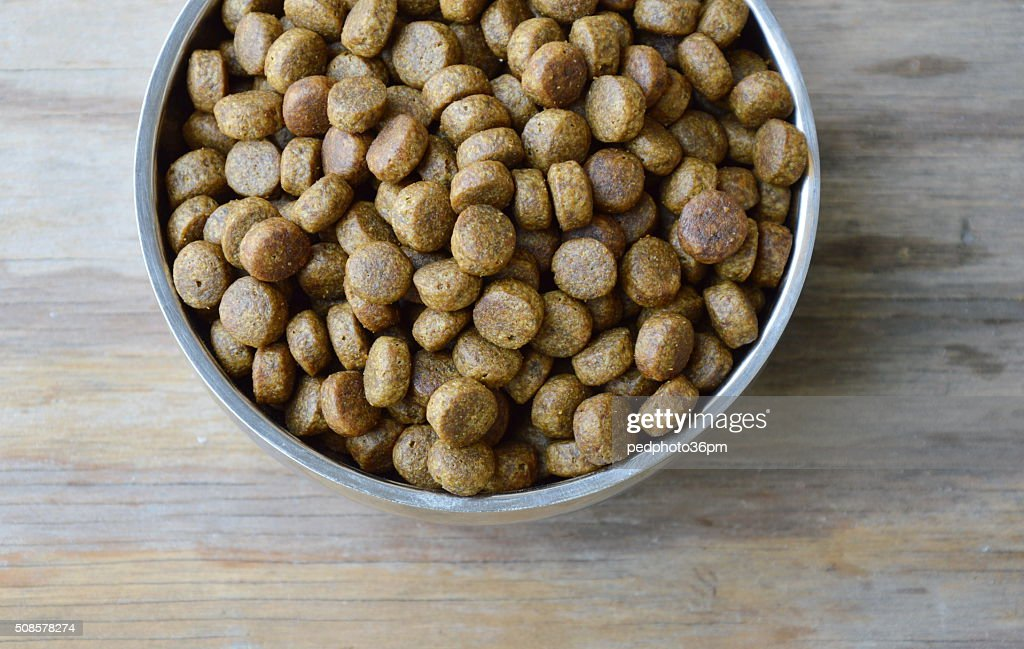 dog food in circle stainless bowl : Stock Photo