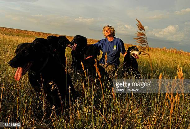 Dog handler Ann Wichmann and her dogs at her home and training facility Jenner's Run in Otis CO Thursday July 28 2011 The farm is named for her late...