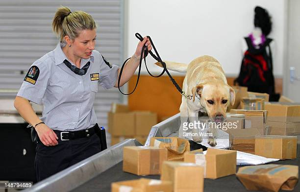 Dog handler Courtney Moore with detector dog Shyann during a demonstration at the graduation of detector dogs at Auckland International Airport on...