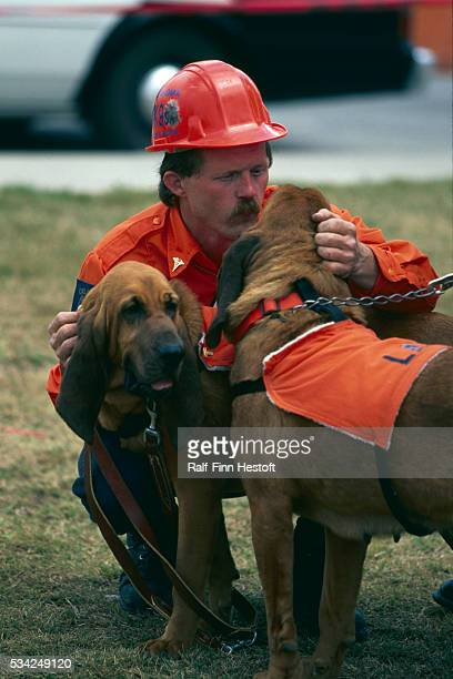 A dog handler gives affectionate encouragement to his bloodhounds at the site of the Oklahoma City bombing The dogs were used to find victims buried...