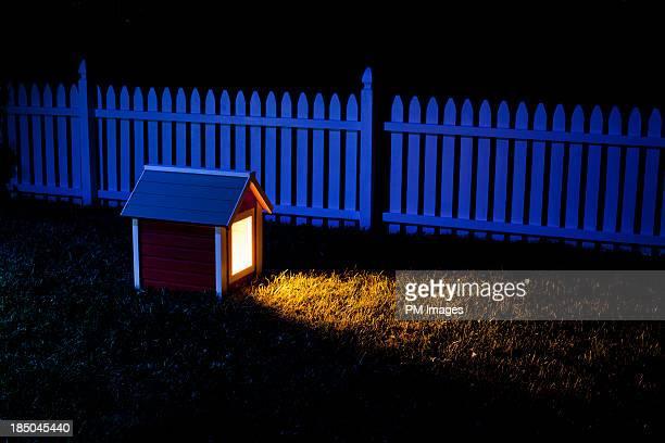 Dog house at night