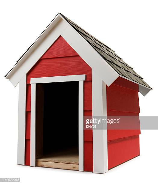 dog house - blame stock pictures, royalty-free photos & images