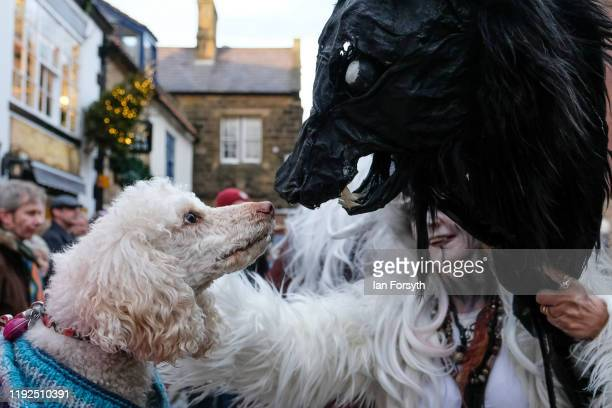 A dog interacts with a model of a wolf's head held by a participant as they walk through the streets during the annual Whitby Krampus parade on...