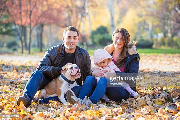 dog is an important member of our family - english bulldog stock pictures, royalty-free photos & images