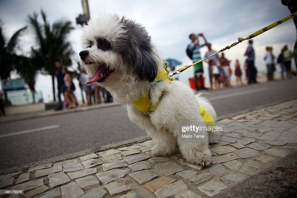 Rio Gears Up For World Cup Tourism : News Photo