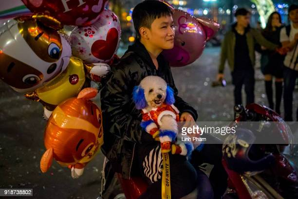 A dog is dressed to celebrate Year of the Dog at the Old Quarter on February 16 2018 in Hanoi Vietnam The Chinese Lunar New Year also known as the...