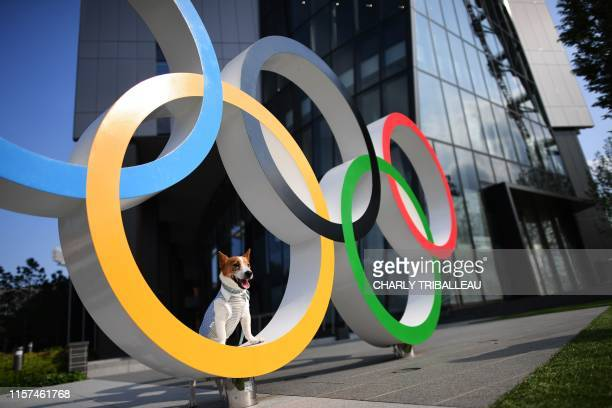 A dog is pictured on the Olympic Rings displayed at the Japan Sport Olympic Square beside the new National Stadium still under construction in Tokyo...