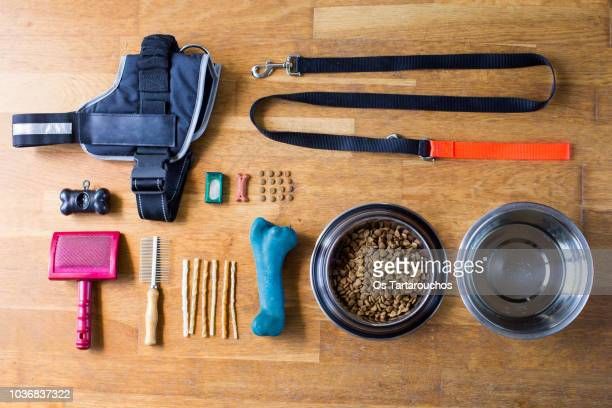 dog items knolling - pet equipment stock pictures, royalty-free photos & images